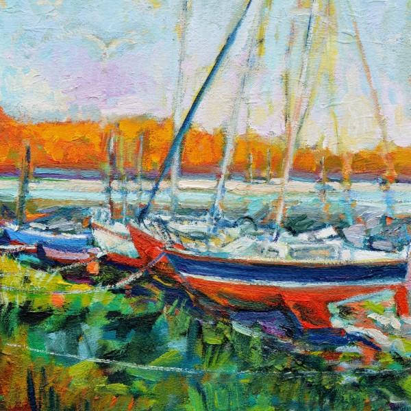 Boats at Llangwm