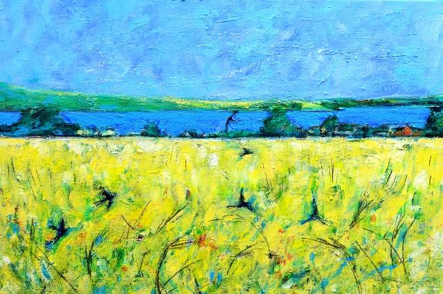 Wheat field over looking Llangwm Ferry